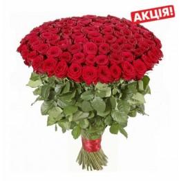 101 троянда 50 см