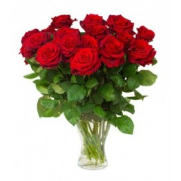 19 троянд 60-70 см