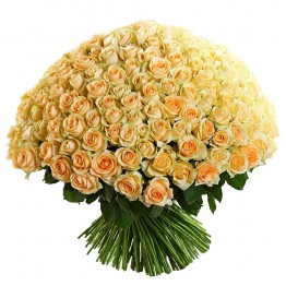 201 троянда 100 см