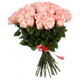 25 троянд 60-70 см