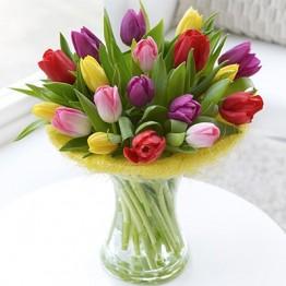 17 тюльпанів