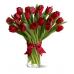 19 тюльпанів