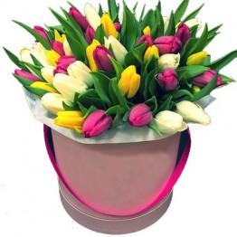 29 тюльпанів в коробочці