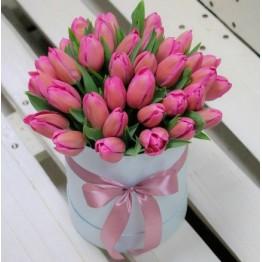35 тюльпанів в коробочці