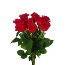 Троянди з доставкою у Львові
